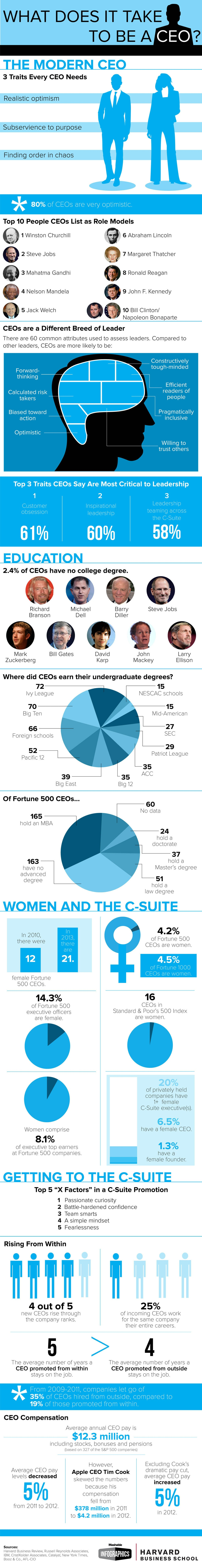 ceoinfographic